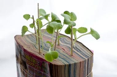 """Conheça o """"Mangá Farming"""" o vaso geek criado pelos japoneses."""
