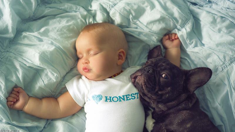 bebe e cachorro01