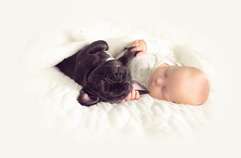 bebe e cachorro02