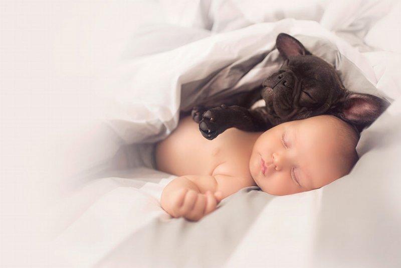 bebe e cachorro04