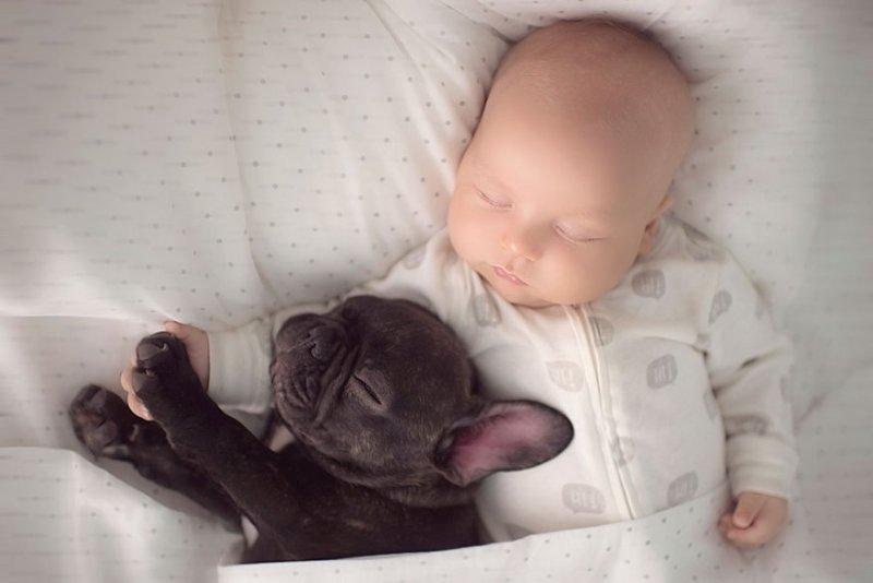 bebe e cachorro05