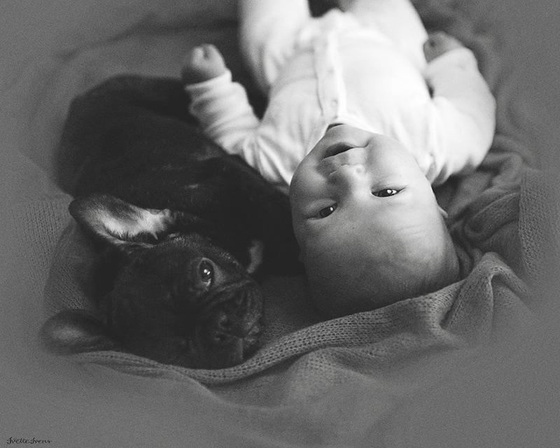 bebe e cachorro06