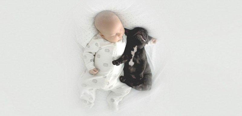 bebe e cachorro09