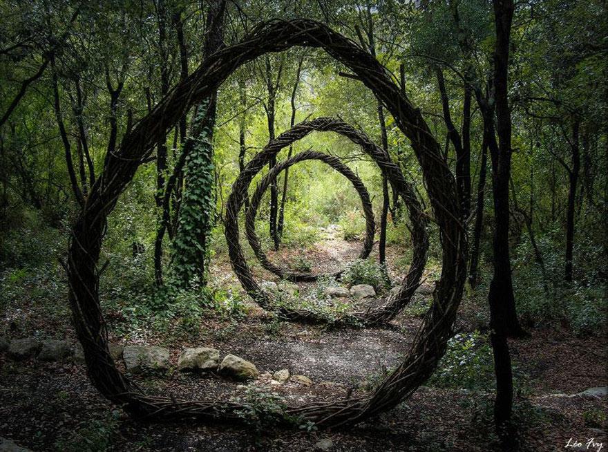 floresta01