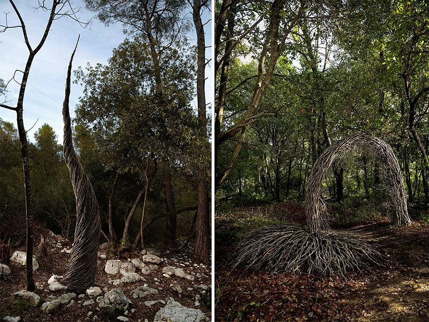 floresta05