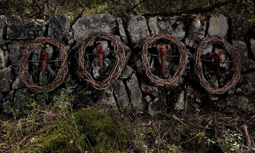 floresta07