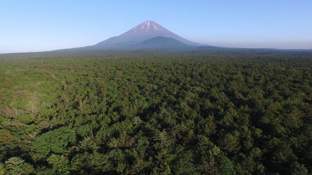 Aokigahara, a floresta dos suicídios - visão aérea