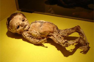 Os museus mais bizarros do mundo que você não pode deixar de visitar!